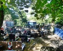 Prace ekshumacyjne na Cmentarzu Garnizonowym w Gdańsku