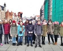 Projekt Tożsamość / Lokalność / Polskość (luty 2019)